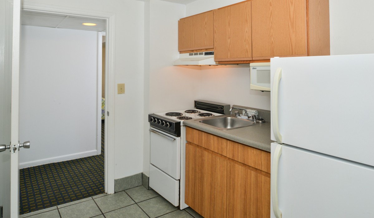 Kitchenette with stovetop and fridge
